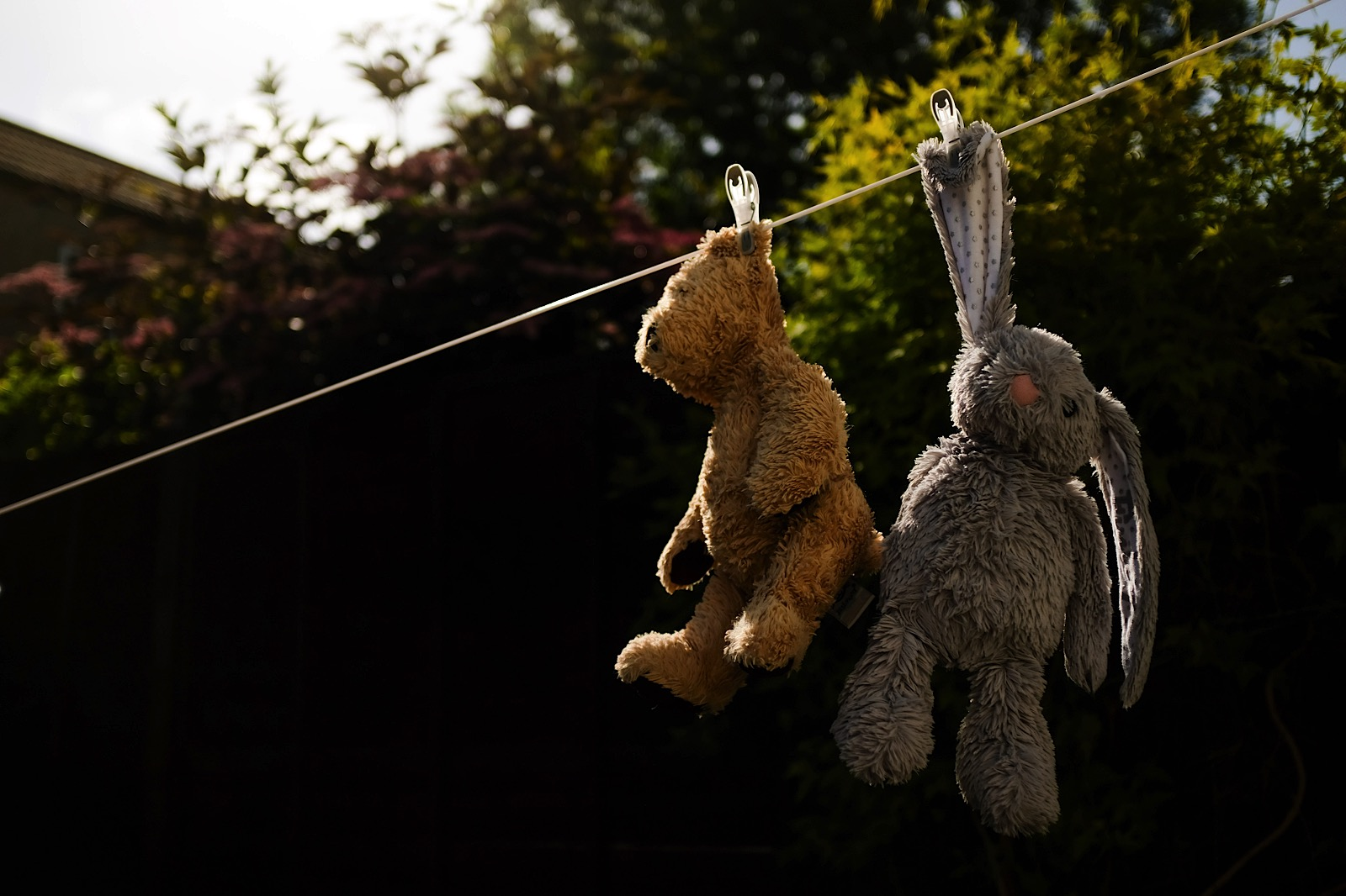 Image of child's soft toys hung on washing line during covid-19 pandemic